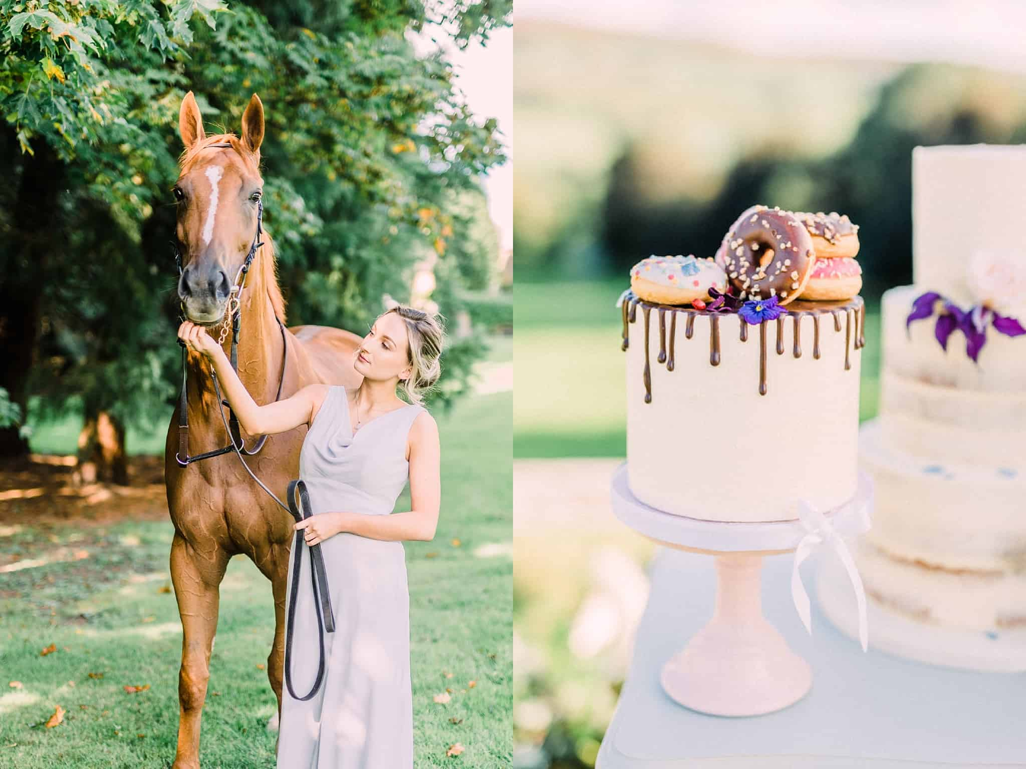 Bridesmaid with horse, Wedding Cake outdoors